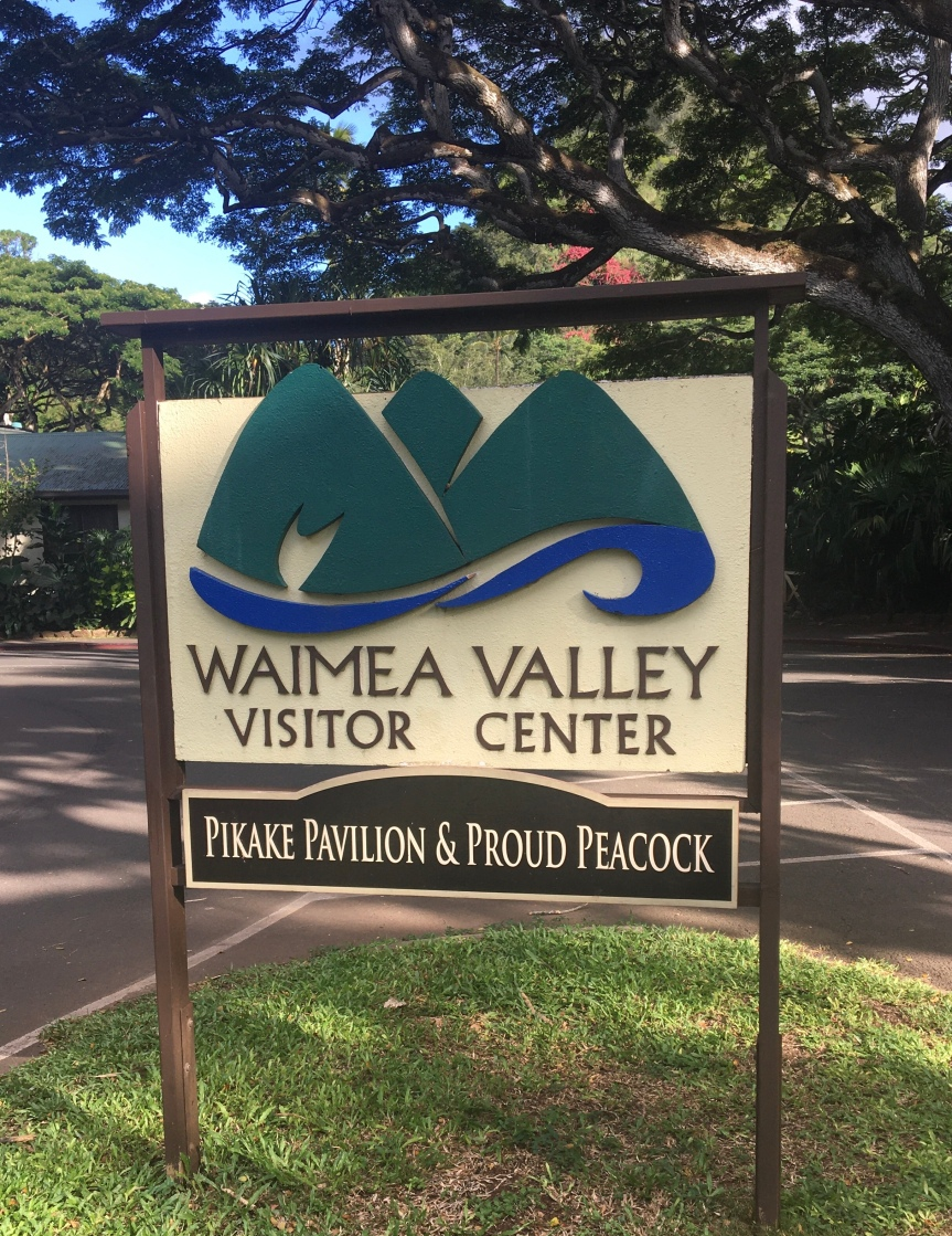Exploring Waimea Valley